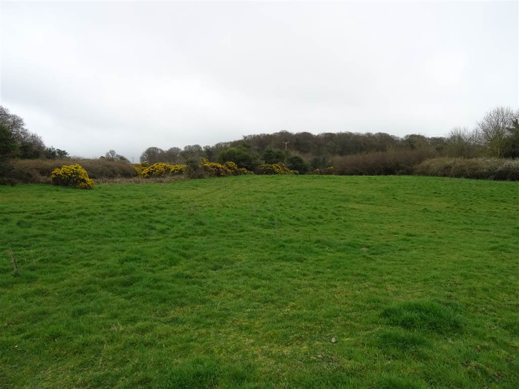 C.10 Acres @ Thornyhill Road